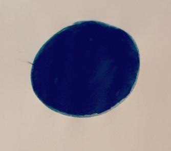 Cerchio blu